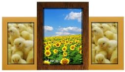 золотая рамка для 3 фотографий купить